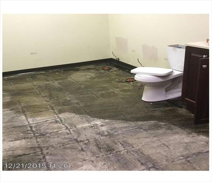 Commercial building toilet overflowed