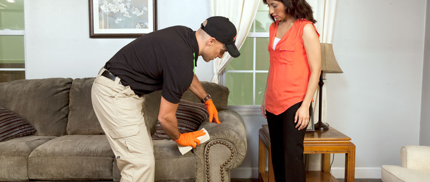 Manchester, NH carpet upholstery cleaning